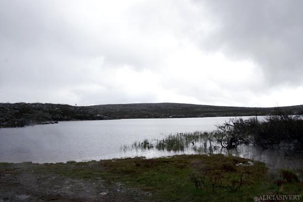 aliciasivert, alicia sivertsson, alicia sivert, fjällvandring, vandra i fjäll, fjällen, fjällvandra, vemdalen, vemdalsskalet, hike, hiking in sweden, härjedalen, norrland, sverige, varggranshågna, varggranssjön,