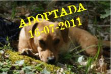 Pitufa Adoptada