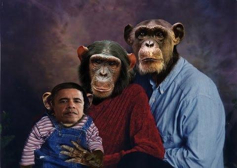 http://2.bp.blogspot.com/-dYJqNZt0vck/TaoZ5JfBVSI/AAAAAAAAGQk/vfd6rf1Yw7Y/s1600/President_Obama_Monkeys-thumb-480x341.bmp