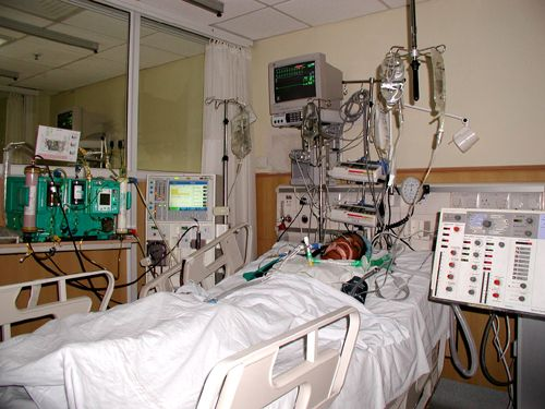 Icu Female Patient : City Distributers: Intensive care unit