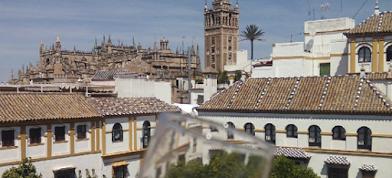 Sabores de Sevilla frente a la Giralda