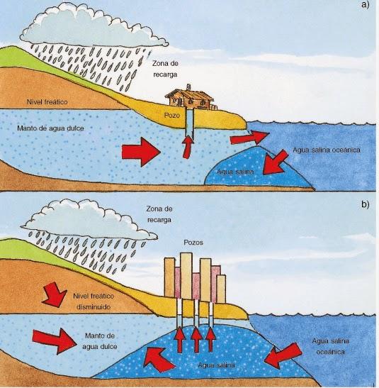 Resultado de imagen de salinizacion acuifero