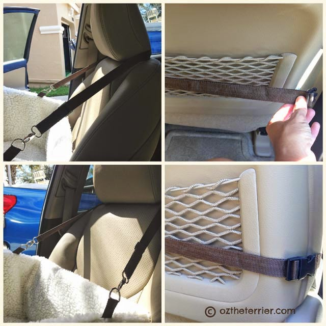 Securing Tagalong Pet Booster Seat by Solvit Products in car