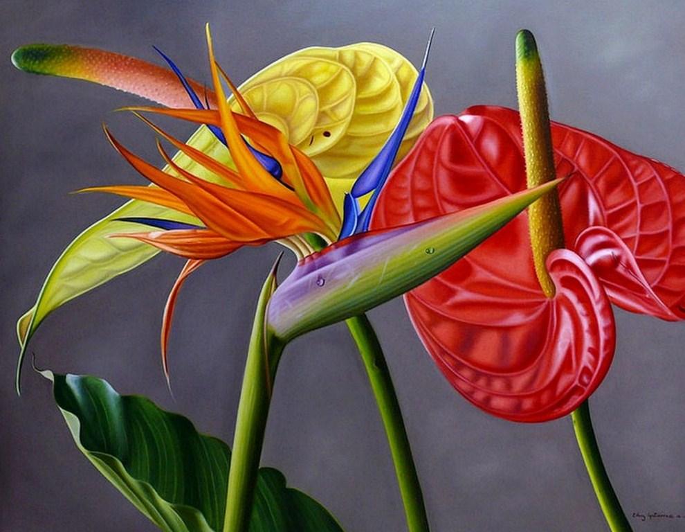 Pinturas cuadros lienzos flores rojas tropicales - Flores tropicales fotos ...