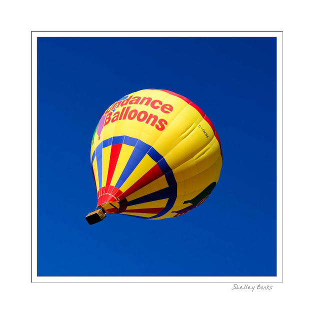 Riding high in a hot air balloon  — it's all about colour! © SB   Copyright Shelley Banks, all rights reserved.
