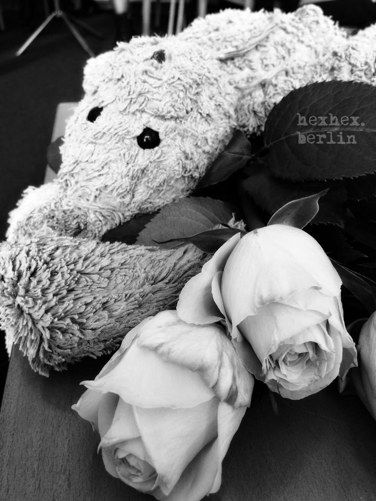 bär heiratet teddy