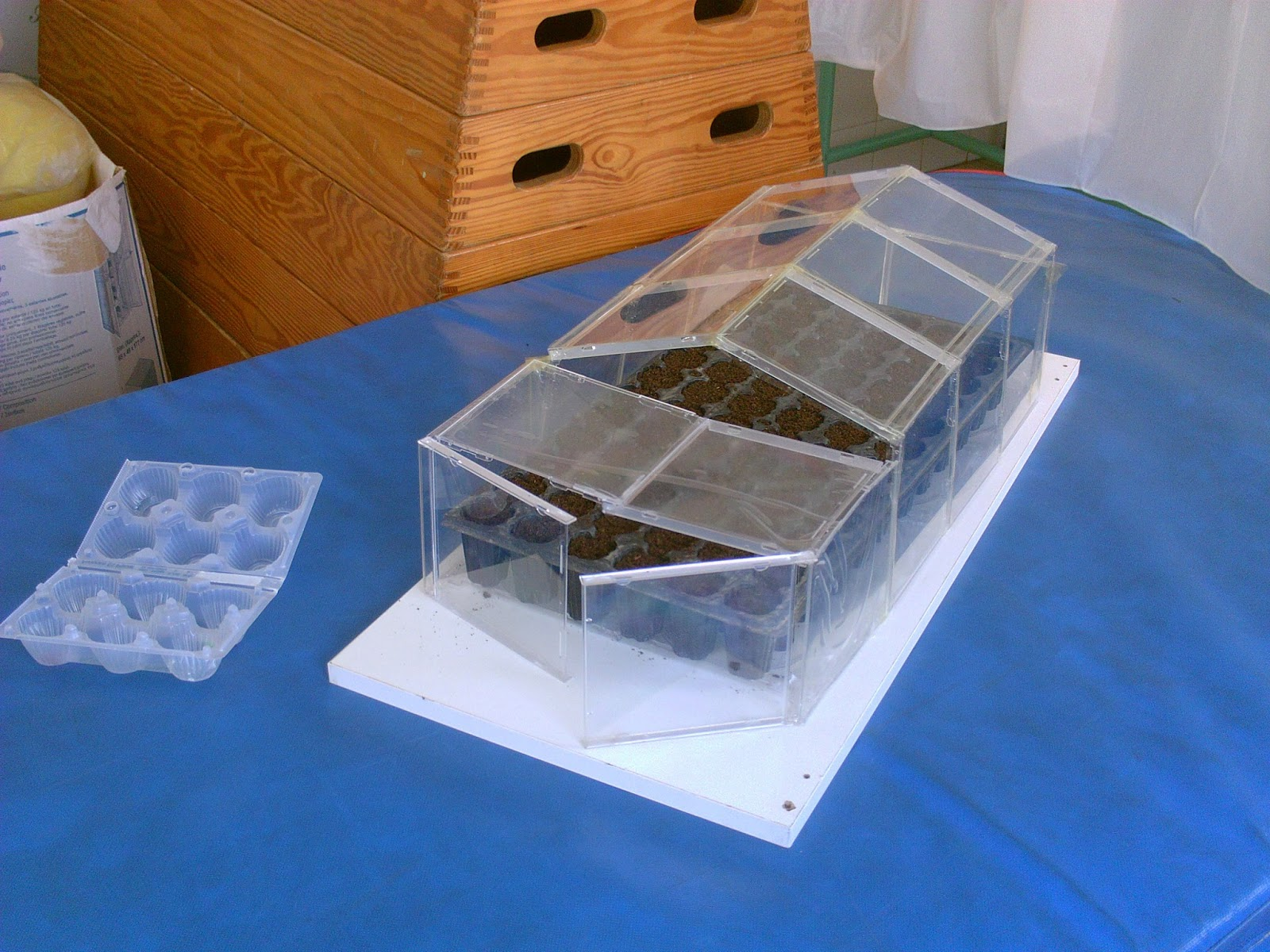 Manual del cient fico menudo invernadero - Como hacer un invernadero pequeno ...