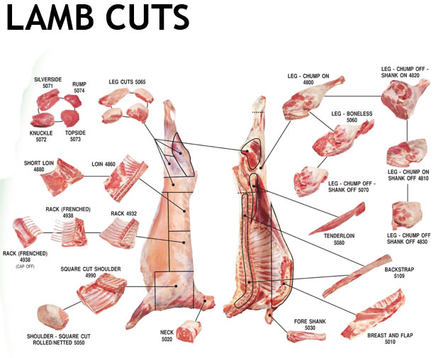 easy cooking lamb cuts