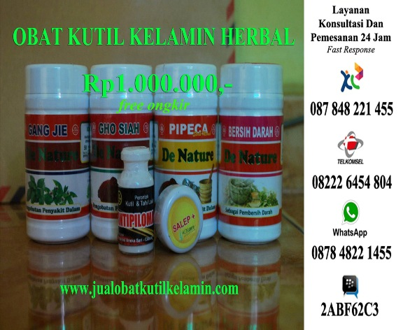 Jual obat kutil kelamin herbal tradisional
