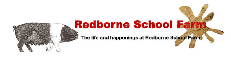 Redborne School Farm