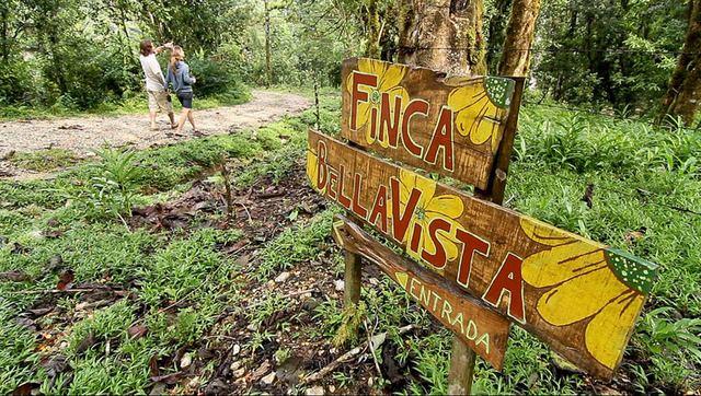 xenodoxeio dentrospita 8 Finca Bellavista: Ένα χωριό γεμάτο δεντρόσπιτα