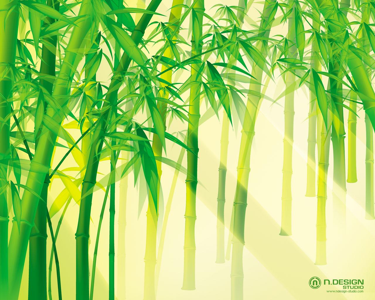 http://2.bp.blogspot.com/-d_nLEy8IUnU/Tk065Atgd1I/AAAAAAAAI5I/BZ9GQF0NeAQ/s1600/bamboo+wallpaper+scene-1280x1024.jpg