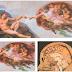 POSTAGEM 28: O cérebro humano no teto da Capela Sistina?
