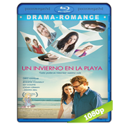 Un invierno en la playa (Stuck In Love) BRRip 1080p Audio Dual Lat-Eng (2012)
