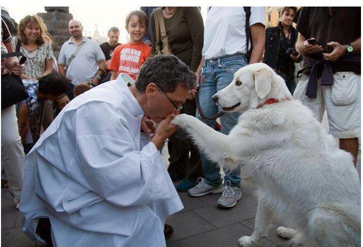 Fraternidad, egrégora, oportunidad. El+cura+y+el+perro
