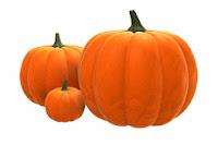 http://www.sheknows.com/food-and-recipes/articles/818433/Pumpkin-Recipes
