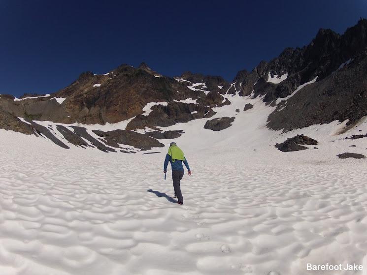 Anderson Glacier Olympic