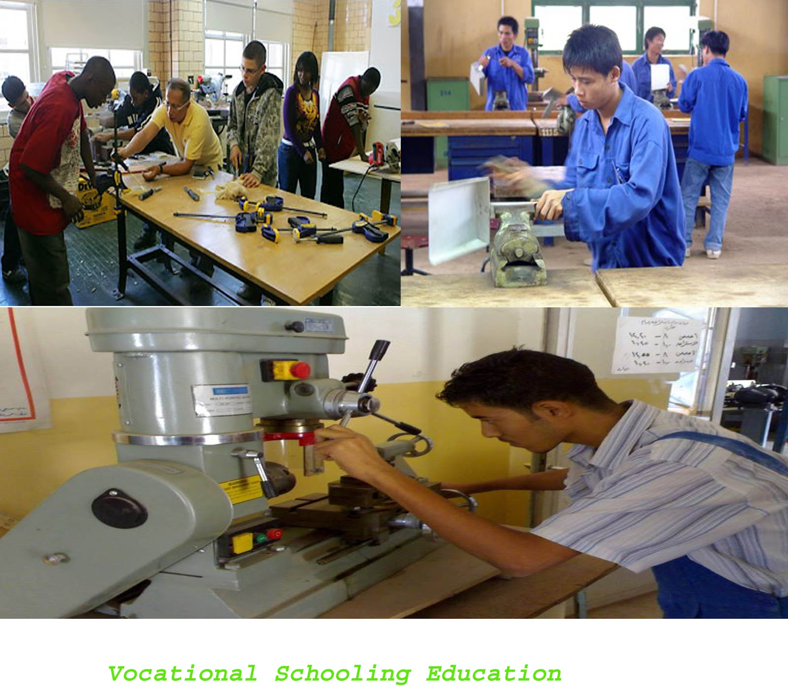 vocational training Ensure all students in vocational programmes have adequate numeracy and  literacy skills  design training for career advisors to provide these  competences.