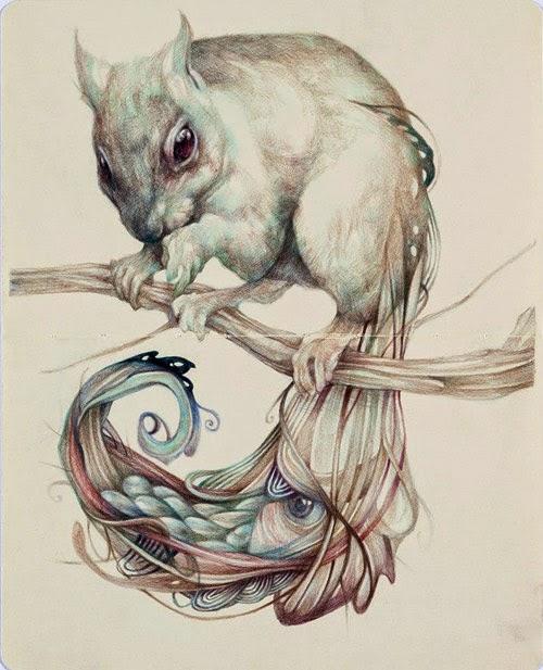 marco-mazzoni-illustrazioni-scoiattolo