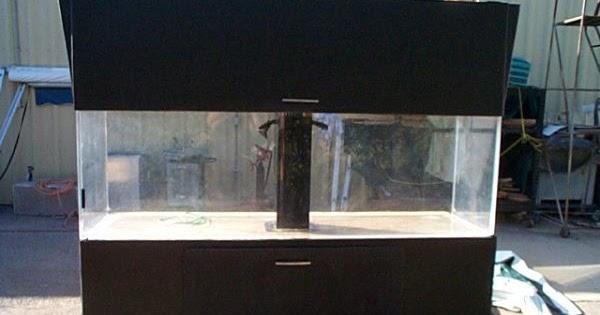Giant aquariums salt water fish tank 300 gal 1000 for Fish tanks craigslist