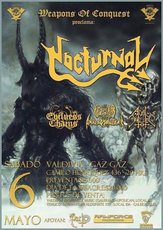 Nocturnal en Valdivia Mayo 2017