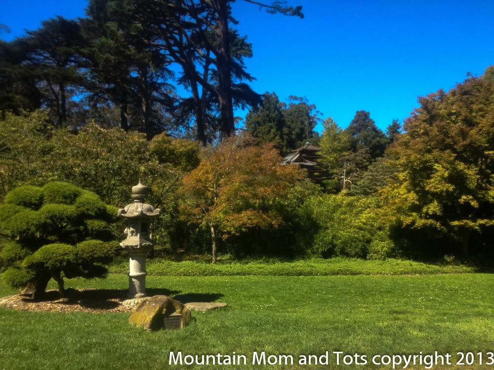 San Francisco Botanical Gardens Golden Gate Park San