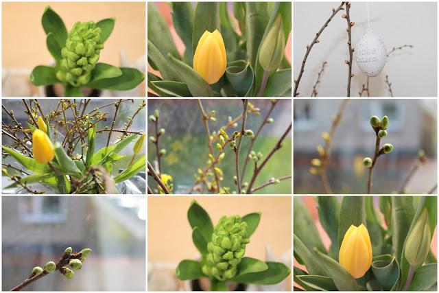 Tulpen, Blumen, Fruehlingsdeko