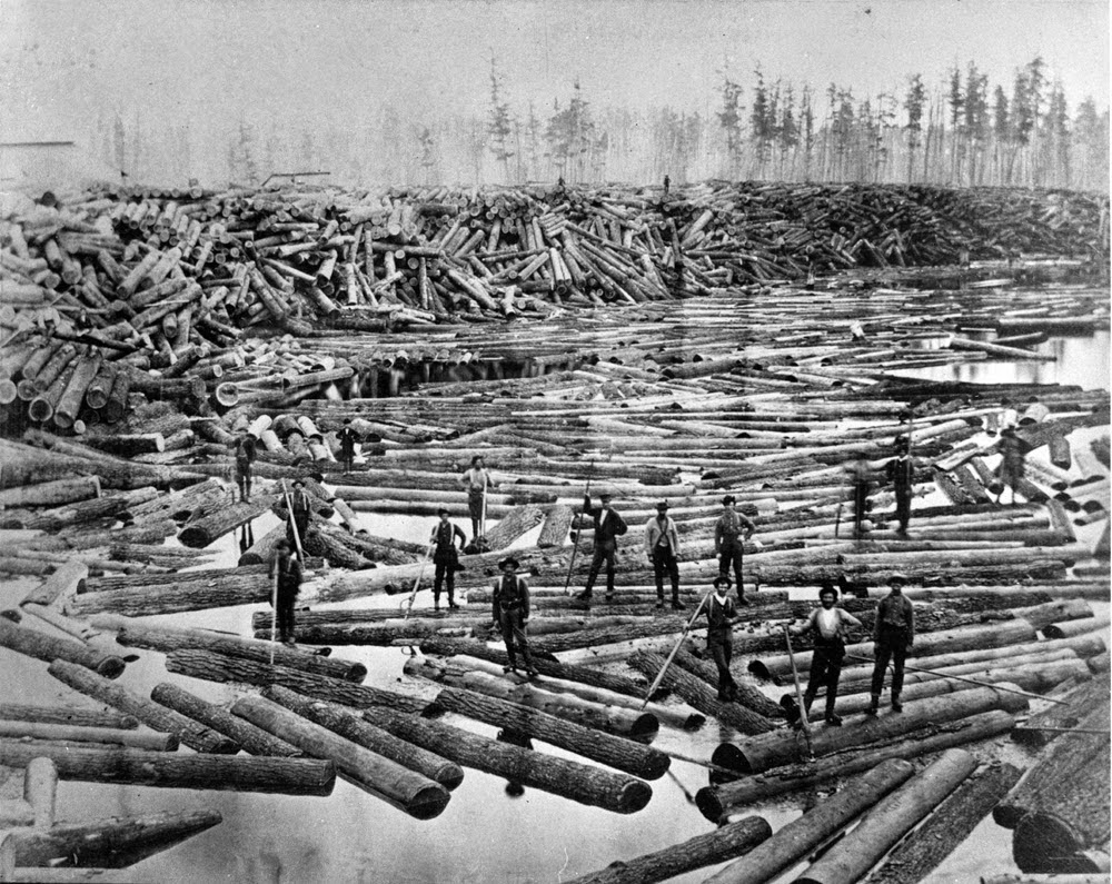 Massive logging operation, Michigan (1800s).