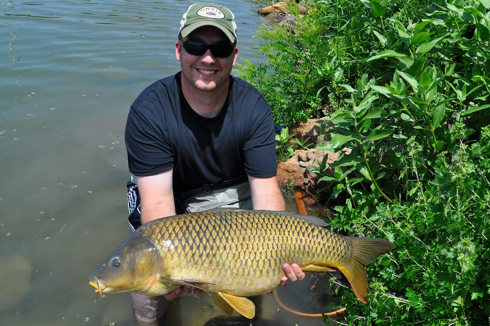 Colorado springs urban flyfishing investment banking for Fishing lakes in colorado springs