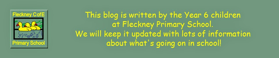 Fleckney Primary School Blog