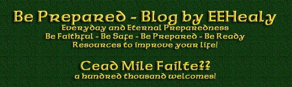 Be Prepared - Blog by EEHealy
