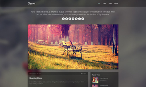 http://2.bp.blogspot.com/-dcDZ8AJAKDU/UexIQp-UH2I/AAAAAAAASN8/hqWPkW7AeXM/s1600/Obscura-Free-Responsive-HTML-Template.jpg