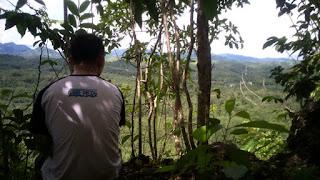 puncak - Goa Beramban, Piani, Tapin