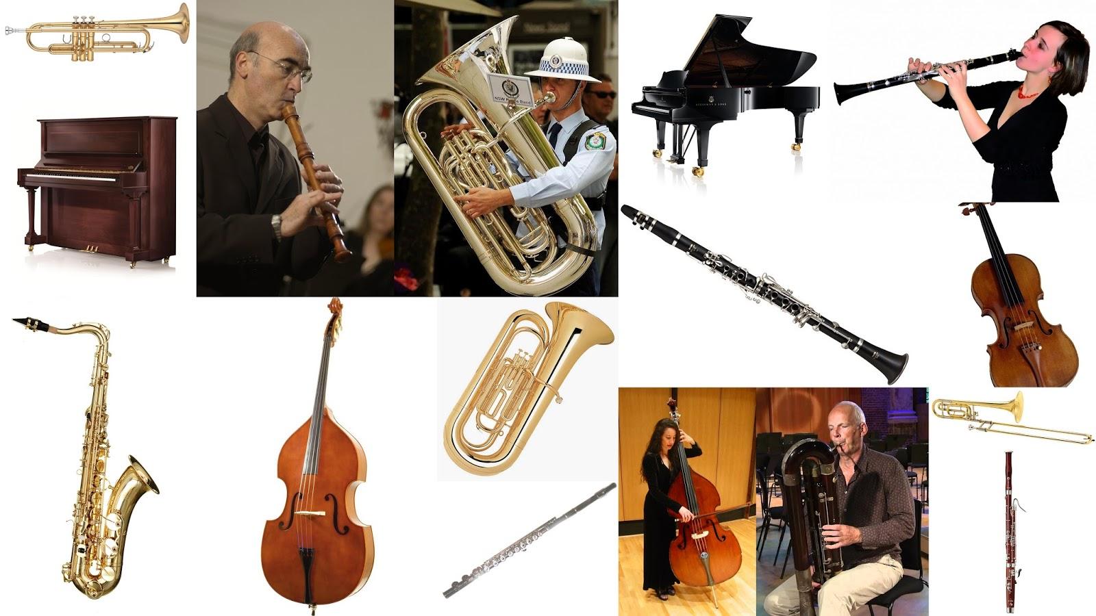 Chantecler apprendre dans la joie ecouter les for Instruments de musique dax