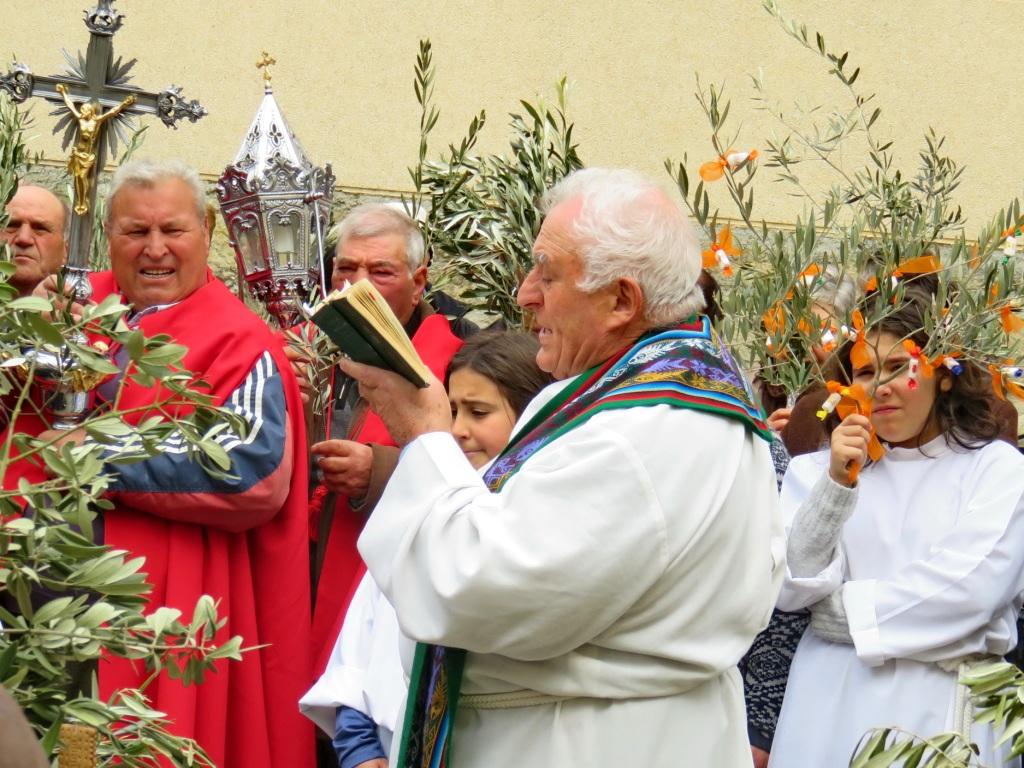 Domingo de Ramos '16