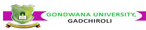 Gondwana University Gadchiroli B.Sc. Sem 1 Result Summer 2013