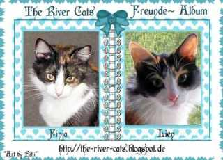 ♥ The River Cats ~ Freunde ~ Album ♥