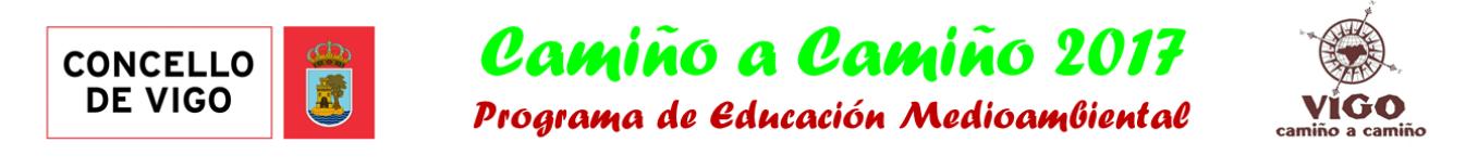 Camiño a Camiño Vigo 2017