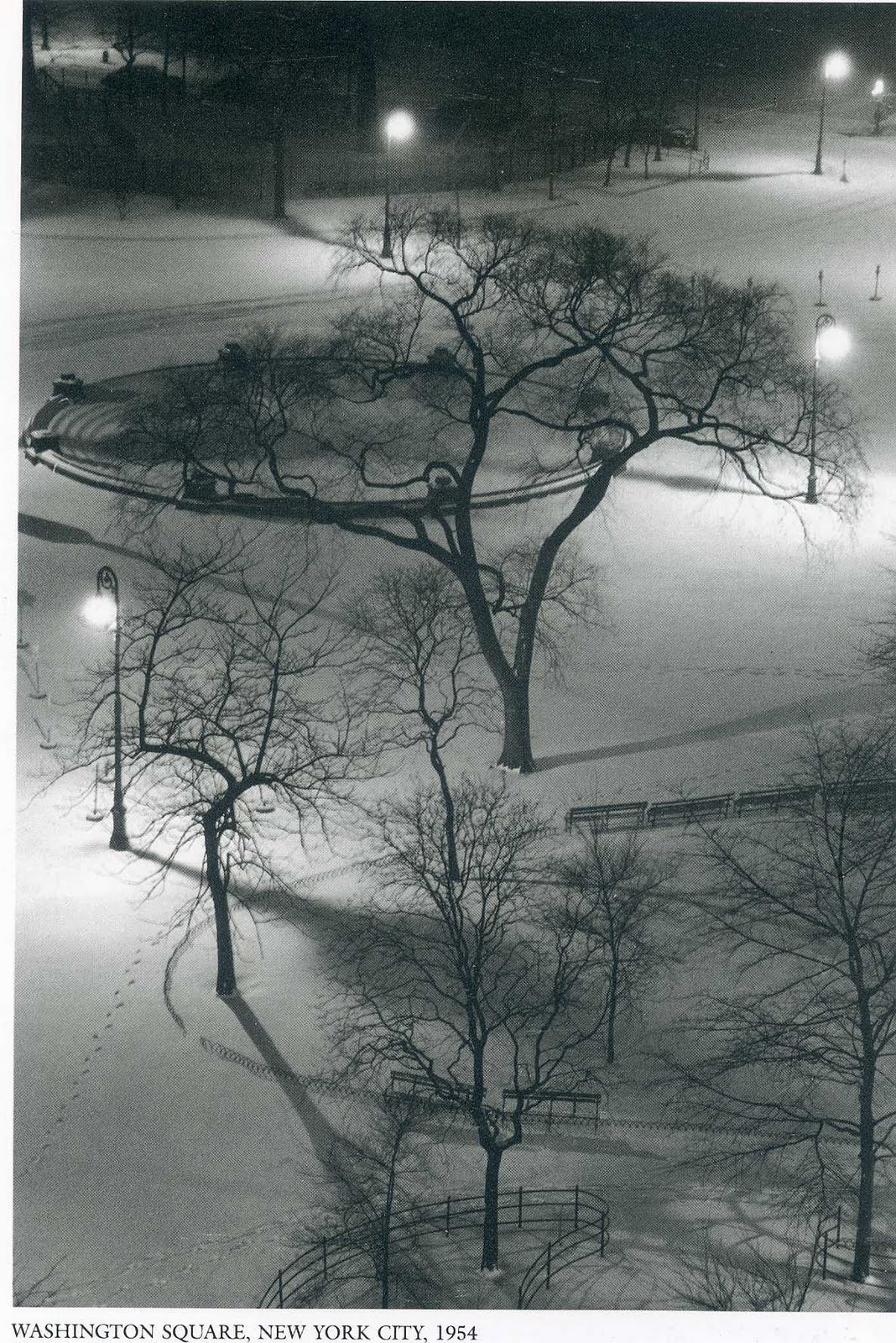 The Photography Files Andre Kertesz