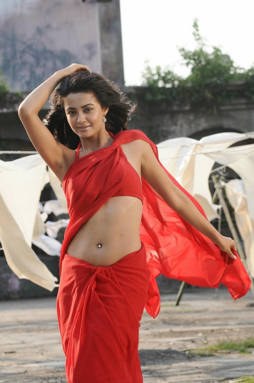 Actress Surveen Chawla hot navel show