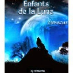 http://lesreinesdelanuit.blogspot.be/2014/09/enfants-de-la-lune-t1-crepuscule-de-sg.html