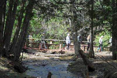a group crossing the bridge in Scout Valley as they hike the area