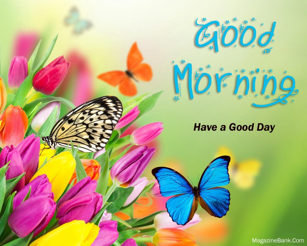 Good Morning Quotes With Flowers : Good morning quotes with flowers