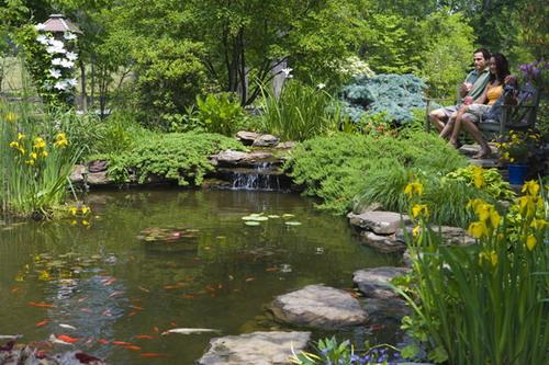 make garden amazing