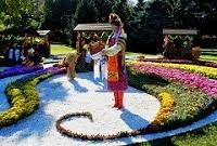 Выставка хризантем 2014 на Певческом поле