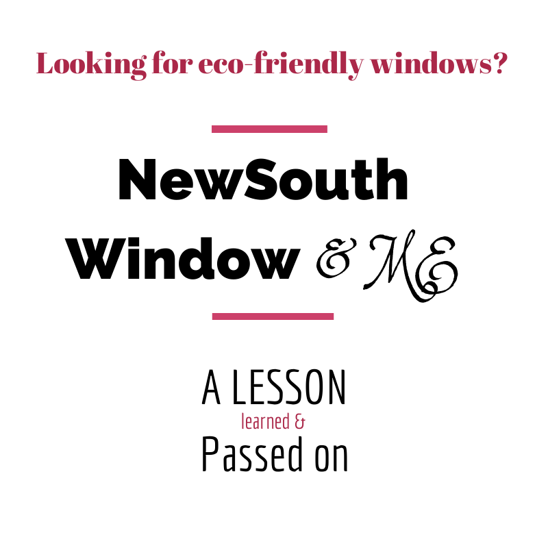 Review of NewSouth Windows