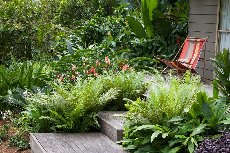 paradis express  secret gardens of sydney