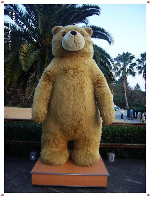 濟州島-泰迪熊博物館4