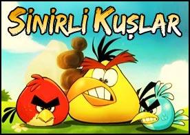 Sinirli Kuşlar Angry Birds Oyunu