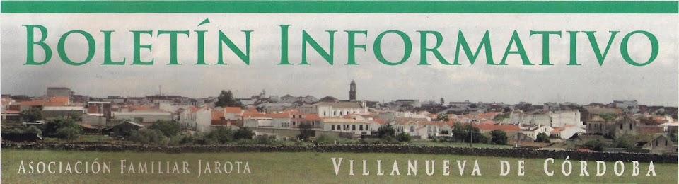 Boletin Informativo de Villanueva de Córdoba
